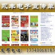 电子宣传单100元/年
