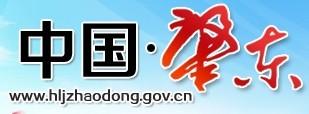 政府门户网站