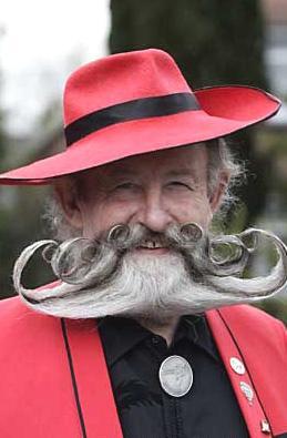 世界上最可爱的胡须