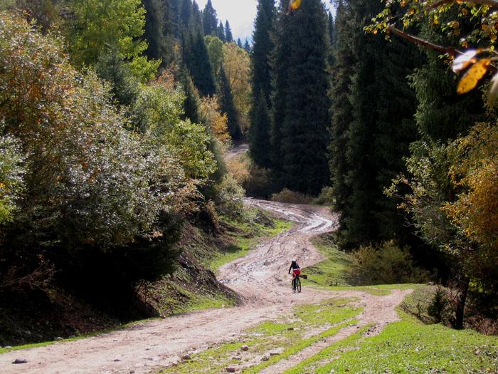 伊犁河谷旅游之草原风情