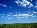 美丽的蓝天白云