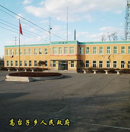 新民市2010年政府工作报告